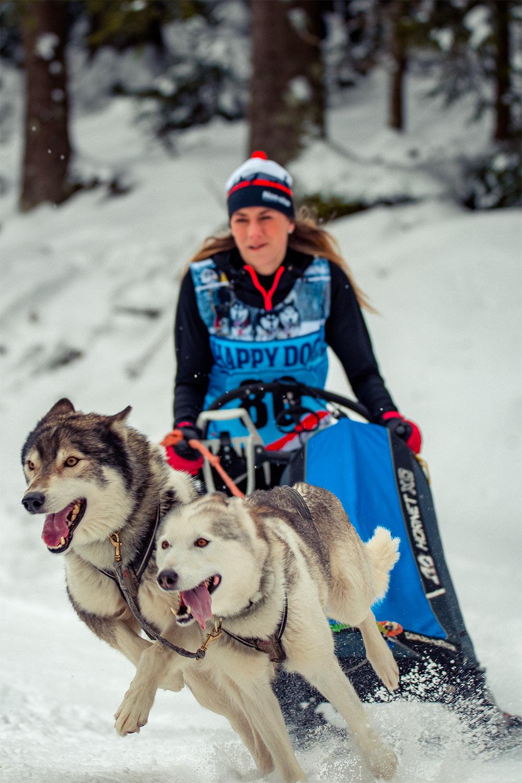 Speed . Hundeschlittenrennen Frauenwald 2018 (Foto: Jens Gutberlet)